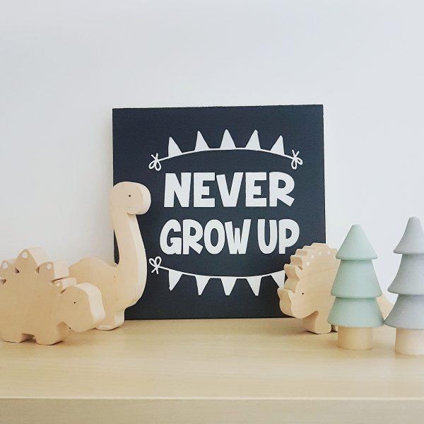 """never grow up"" תמונת קיר מאוירת"