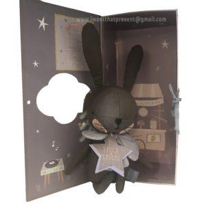 ארנב אפור חום בתוך קופסת מתנה - Picca LouLou